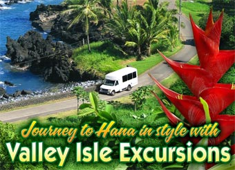 Road to Hana Tour