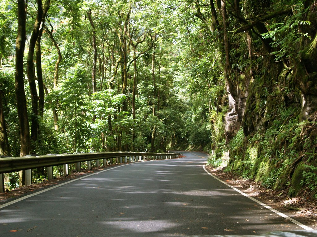 road to hana - HD1024×768
