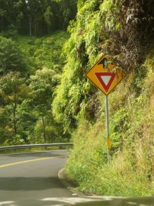 One of the many yield signs on the Hana Highway